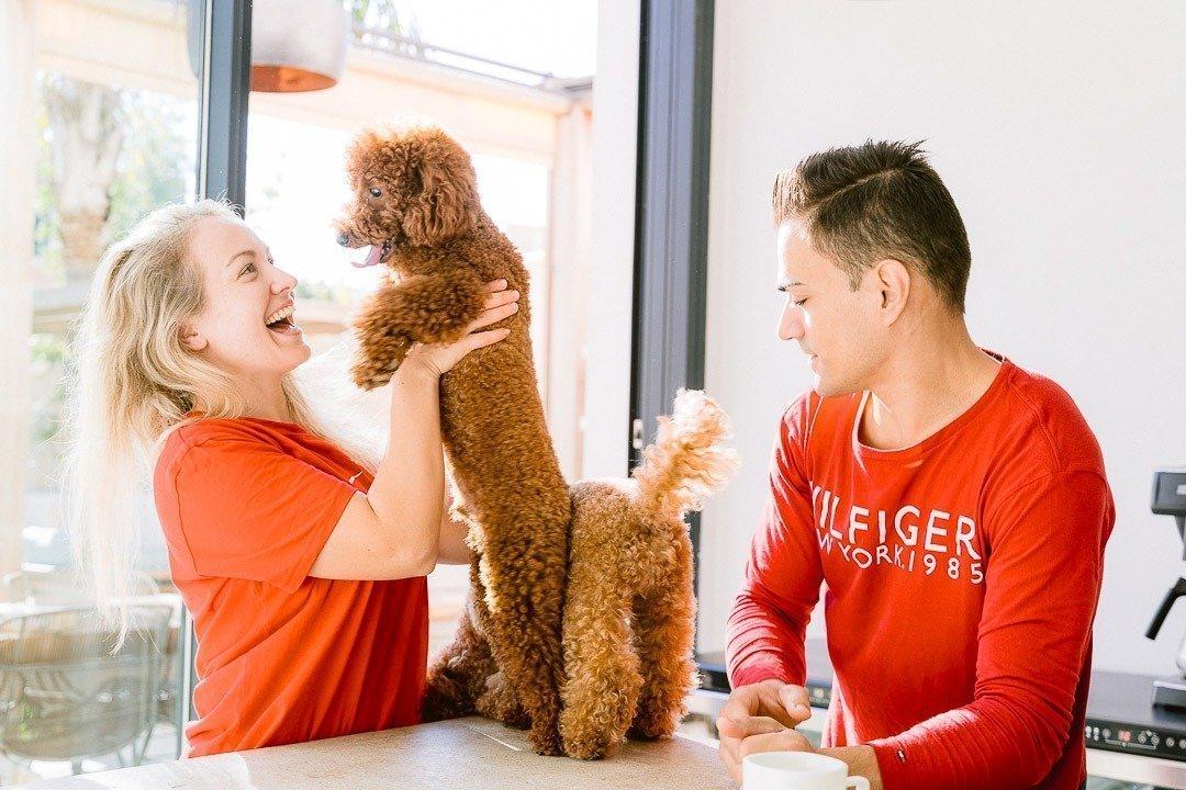 Alzina Living, Dog Photography, Fotografía Animales, Fotografía Perros, Lisa & Adrian, Tommy Hilfiger
