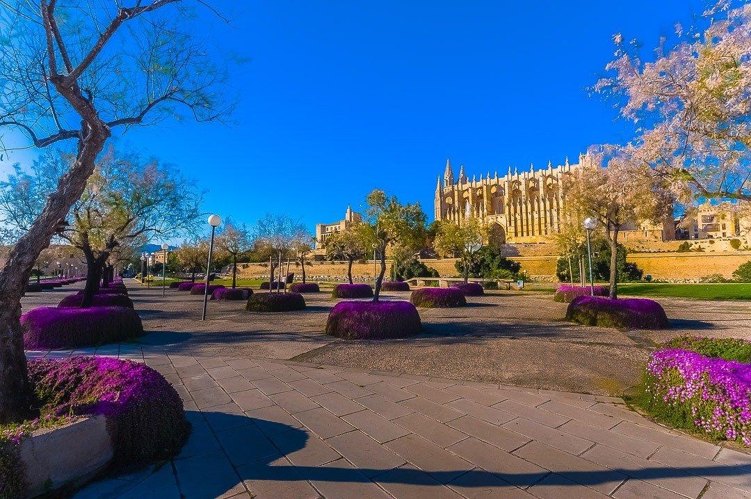 Catedral La Seu, Urban Landscape